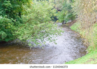 small river flows among the autumn trees