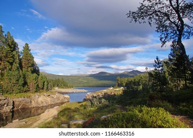 A small river leading into Lake Grana surrounded with pine forest and small mountains which is located in Nerskogen, the center of Norway