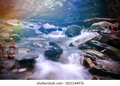 Small River with Moss Covered Stones in the Bright Sun Light Color Filled Rays within the Smoky Mountains National Park.