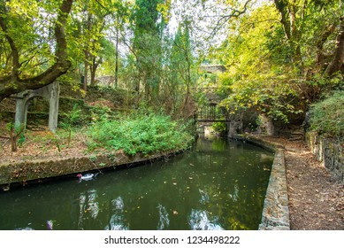 A small river in Rodini park in city of Rhodes (Rhodes, Greece)
