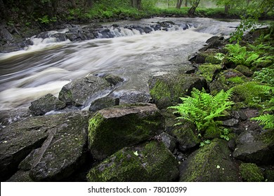 Small river running through a green spring landscape