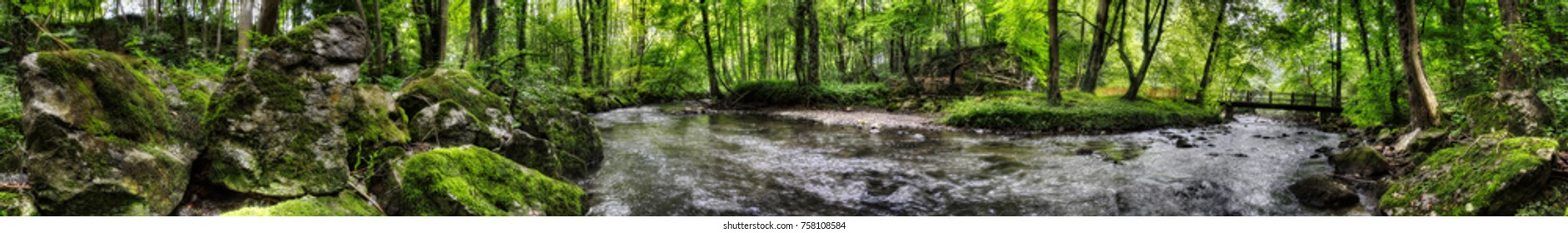 Small River through Forest