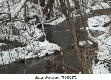 The small river in the winter wood