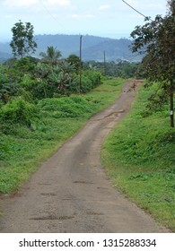 A small road outside of the town of Limbe / Cameroon.