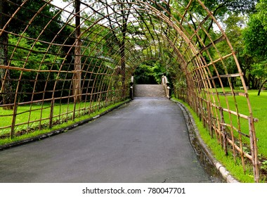 Small road in a park covered by a bamboo archway trellis, designed for growing trailing plants and vines