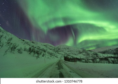 Small road through Arctic Norway, with the Auroras (northern lights) dancing on top