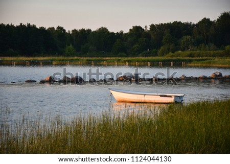 Small rowing boat anchored in a swedish bay by summer season