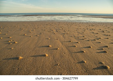 Small sand mounds on the Seashore