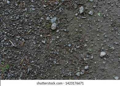 small sharp rocks in dirty mud ground texture with small wooden