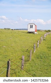 Small shed on green grass in front of the dikes and the Wadden Sea Hattstedtermarsch in the district of Nordfriesland, in Schleswig-Holstein, Germany