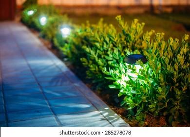 Small Solar Garden Light, Lanterns In Flower Bed. Garden Design. Solar Powered Lamp