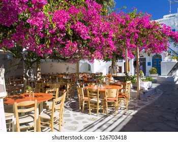 Small square in Mykonos. The photo shows a beautiful place with vegetation and flowers in a sunny day.