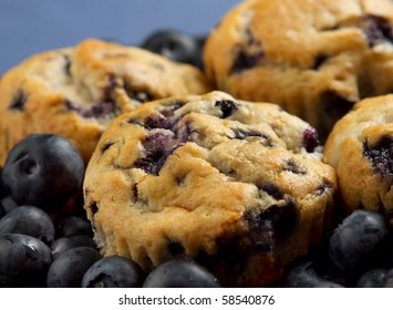 small stack of blueberry muffins and fresh blueberries over a blue background closeup