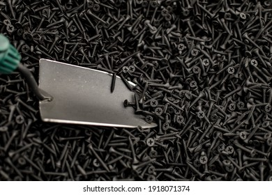 Small Stainless Steel Scoop rakes in lot of small black screws. View from above. Texture. Background. Sale of Construction Materials. bunch of self-tapping screws are scattered. Selective focus