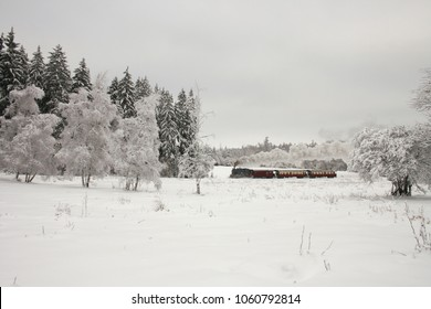 small steam train is riding into snowy forest