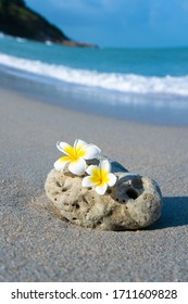 A small stone of an interesting smooth form is washed by waves on the beach. Calm and relaxation by the sea concept.