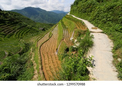 Small stone path in Longshen rice terraces China