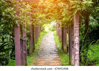 The small stone walk way or patio covered by leaf of fresh trees and wooden poles decoration with the flare from the top of picture.