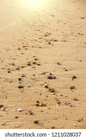 Small stones lie on the beige sand in the sun. Design with copy space. Vertical design.