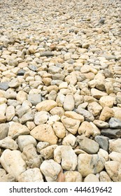 Small stones on the ground.