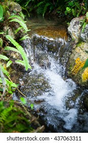 small stream, flowing in a garden at Thailand.
