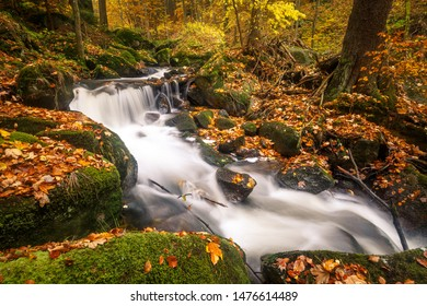 A small stream flows through a colorful autumn forest