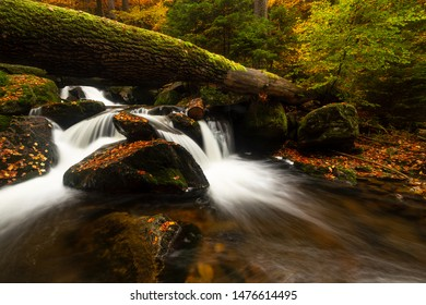 A small stream flows through a colorful autumn forest in the Ilsetal