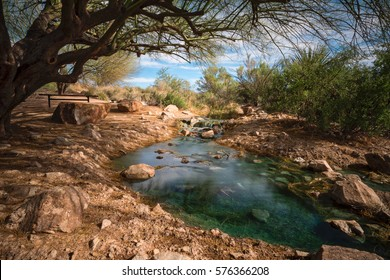 A small stream at Riparian Preserve at Water Ranch, Phoenix, Arizona