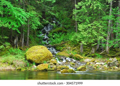 A small stream and water falls feeds the Lochsa River in Idaho.