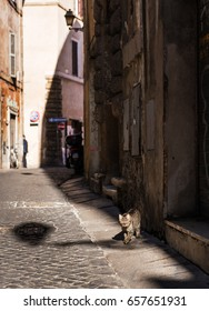 Small street in the centre of Rome, Italy.