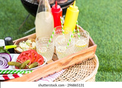 Small summer picnic with lemonade and hamburgers in the park.