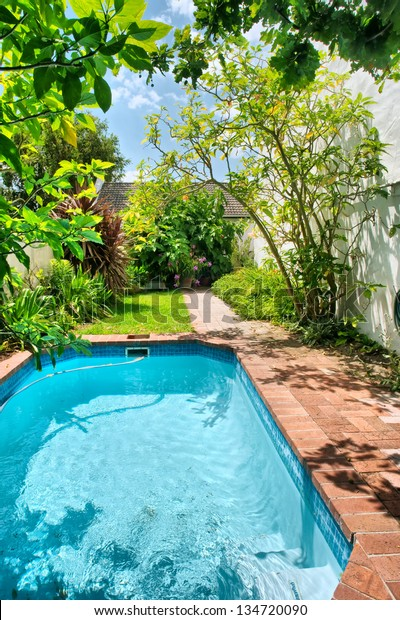 Small Swimming Pool Garden Shot Near Stock Photo Edit Now 134720090
