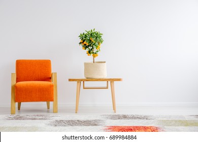 Small tangerine tree in canvas cover on wooden table next to orange chair