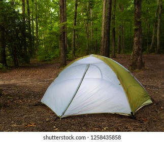 Small tent set up in a dark North Carolina forest