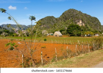 Small thatched traditional barn and farm buildings at the foot of karstic mountains seen during a sunny morning, Vinales, Pinar del Rio Province, Cuba