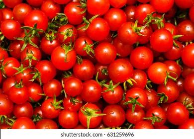 small tomatoes thailand, Solanaceae, baby tomato, cherry tomato