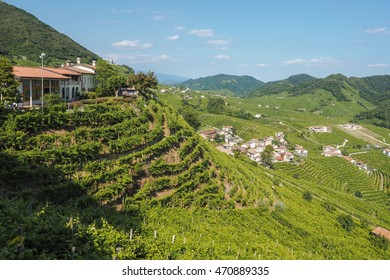 Small town of Valdobbiadene, surrounded by vineyards, zone of production of traditional italian white sparkling wine Prosecco
