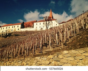 Small town Znojmo in Czech republic with vineyard and old church or cathedral in winter time with blue sky and clouds