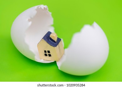 Small toy house in the eggshell on a green background