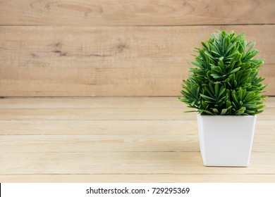 Small tree white pot on wooden desk. copy space