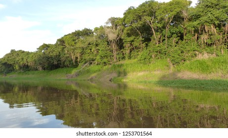 Small tributary from Mamori lake.  Amazonas, Brazil