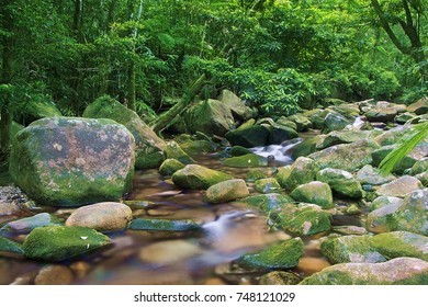 Small tropical creek flows among rocks in the jungle.Daintree cascade.Daintree National Park, Australia.-Image.
