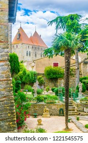 A small tropical garden next to the fortification of Carcassonne, France