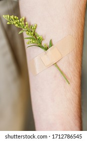 A small twig of yellow flowers is glued to the male hand with a flesh-colored medical bactericidal plaster