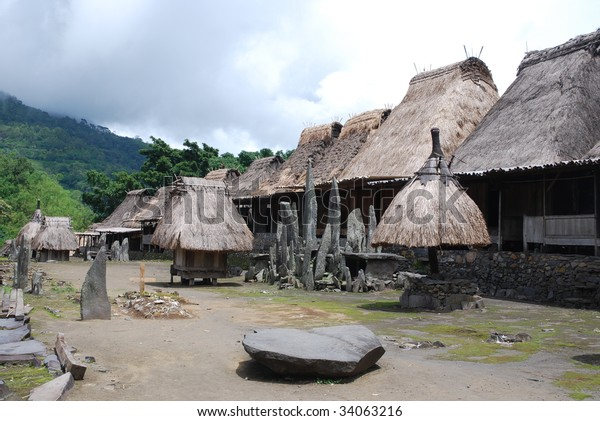 Small Typical Village Flores Indonesia Stock Photo Edit Now