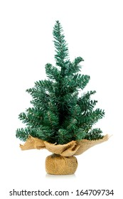 Small undecorated Christmas tree in burlap stand over white background.