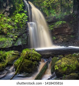 A small, undisturbed and uncultivated waterfall located within a forest in County Donegal, Ireland.