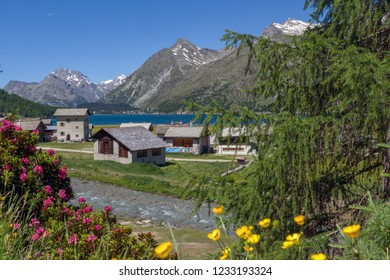 The small village of Isola on the shores of Lake Sils
