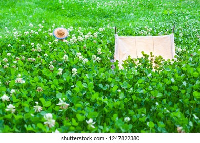 Small vintage illuminated miniature canvas tent at wide meadow of clover plants, back of teddy bear with straw hat tranquil dreamy between leaves (copy space)