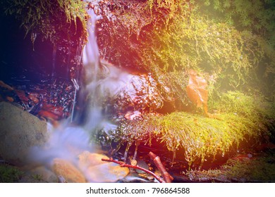 Small Water Fall with Moss Covered River Rocks in the Sunlights Colorful Rays of Light.